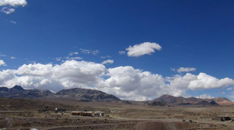 Rayo mata a pastora en sierra de Tacna