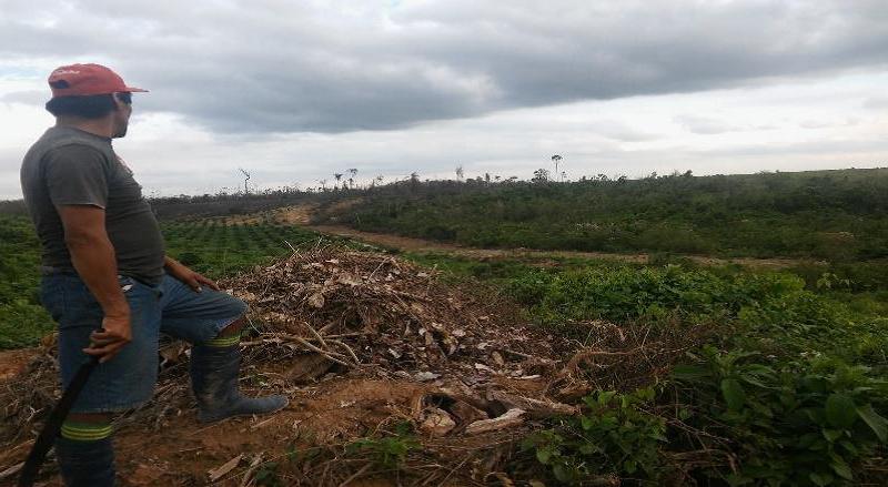 Anuncian construcción de local de escuela policial especializada en materia ambiental  en Ucayali