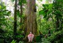 Junín: Cierre temporal del Sendero Turístico en Santuario Nacional Pampa Hermosa