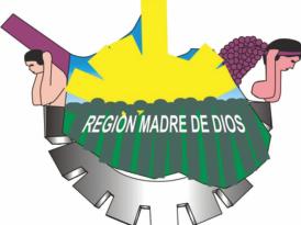Madre de Dios: Consejeros Regionales han realizado Sesión Ordinaria de manera virtual