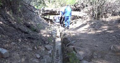 Apurímac: Cientos de hectáreas de cultivo a punto de perderse por sequía en la región