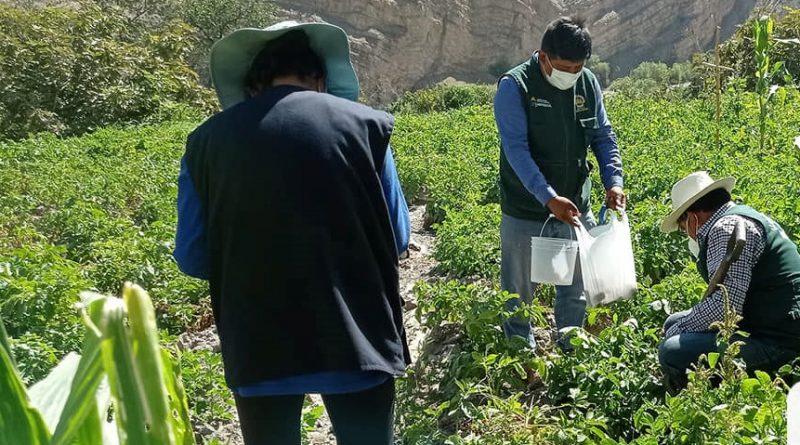 Moquegua: UNAM Realiza análisis de suelos en 3 distritos de Sánchez Cerro