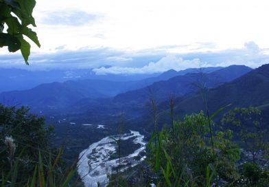 UNESCO reconoce a la Reserva de Biosfera AVIRERI-VRAEM como 7ma del Perú